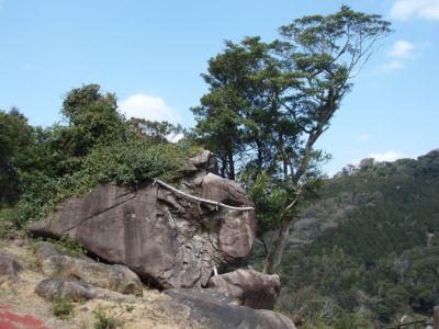 巣食石(岩)